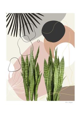 Snake Plant Fan Palm Finesse #1 #tropical #decor #art