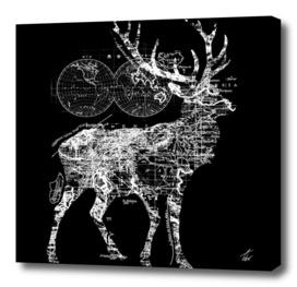 Deer Wanderlust