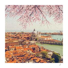 Blooming sakura over Venice.