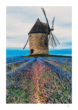 Blooming lavender field against of the old mill.