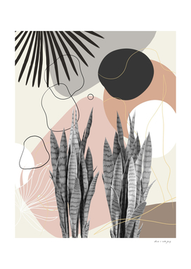 Snake Plant Fan Palm Finesse #2 #tropical #decor #art