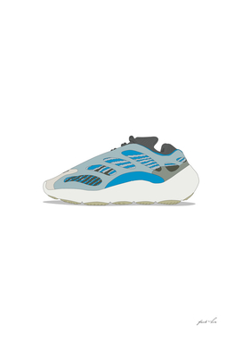 collectors sneaker 1