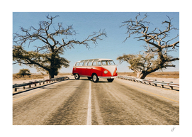 Red car on the highway of the African savannah.