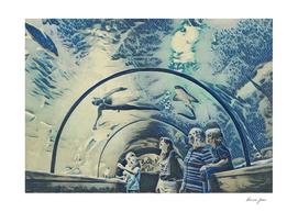Ukraine The Oceanarium Sea Fairy Tale Artistic Illust