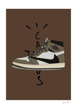 collectors sneaker 19
