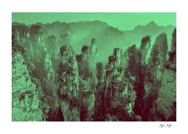 Wulingyuan Scenic Area humid jungle disproportionate