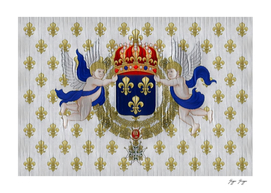 France Colonial Flag Old-fashioned Restored Commemora
