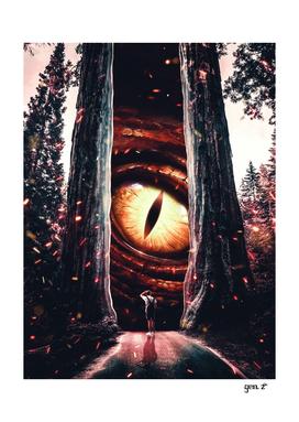 Eye parallel universe