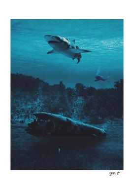 Plane Crash in Ocean