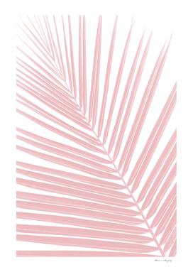 Blush Pink Palm Leaf Dream #1 #tropical #wall #decor #art