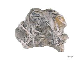 Tremolite Member Amphibole Group Composition