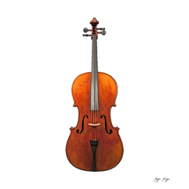 Cello Bowed String Octave Lower Box Resistant High