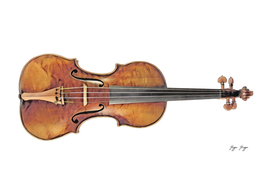 Violin Fiddle Chordophone Hollow Pitched Instrument S