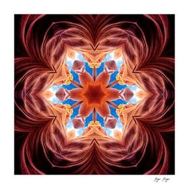 Symmetric Pattern Six Tips Star Alternative Indian De