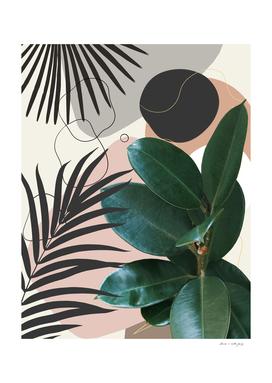 Ficus Elastica Fan Palm Finesse #1 #tropical #decor #art