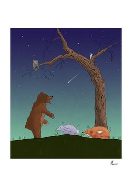 Night Bear Scare