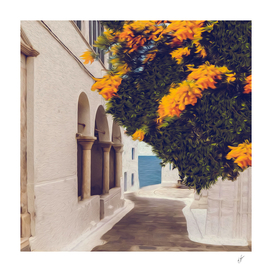 Blooming mimosa against of the old town by the sea.