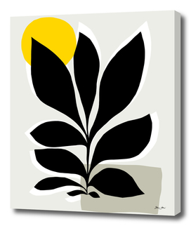 DV_21.15_10_Matisse_2.1_Classic Nature_HR_JEWEL