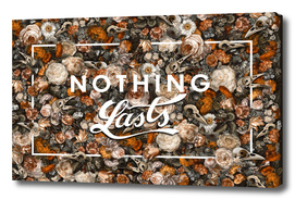 Nothing Lasts