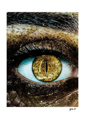 Crocodile Human Eye