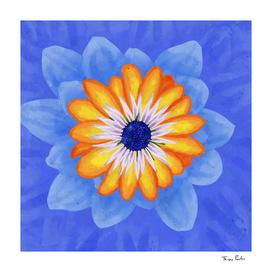 Orange and Blue Exotic Flower