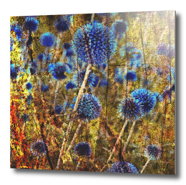 BLUE WILD SYMPHONY of SUMMER
