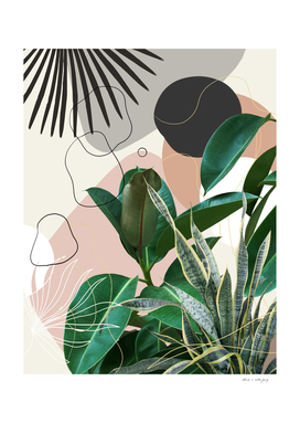 Ficus Snake Plant Fan Palm Finesse #1 #tropical #decor #art