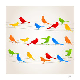 Bird on a wire