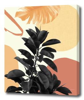 Ficus Summer Finesse #1 #tropical #decor #art