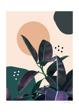 Ficus Summer Abstract Finesse #1 #tropical #decor #art