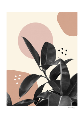 Ficus Summer Abstract Finesse #2 #tropical #decor #art
