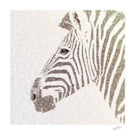 The Intellectual Zebra