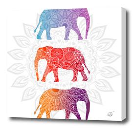 Elephantz