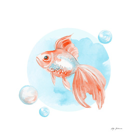 Fish and bubbles