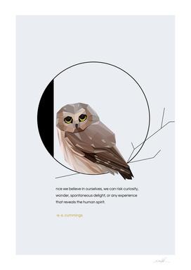 O for Owl