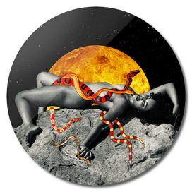 The Venus Priestess