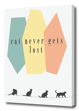 cat never gets lost