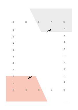SUPER WONDERFUL/PARALLEL WORLD