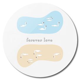 forever love -swan-