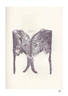 ELEPHANT 10