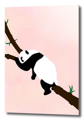 relax -panda-