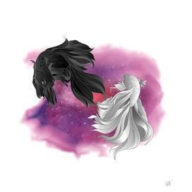 Yang & fish