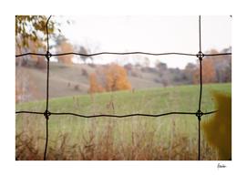197709 Fence Shot, fields STRAIGHT