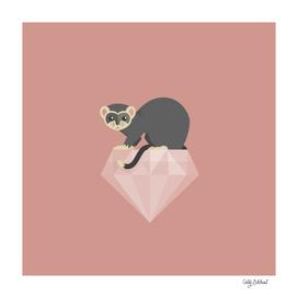 14 Ferret Diamond