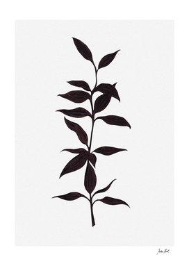 Bamboo ink painting, plant, nature illustration