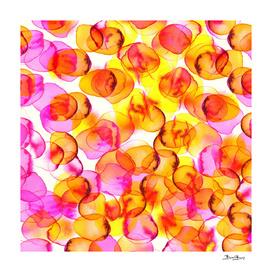 Summer Petals