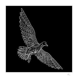 black seagull