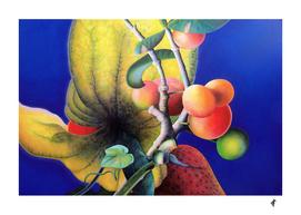 Fruiturama