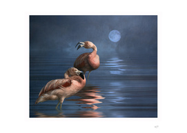 Flamingo Moon