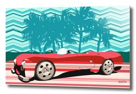 Vintage Stipes Retro Car Poster